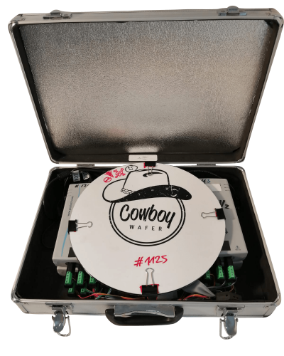 Cowboy with Case